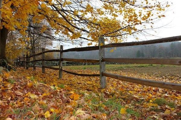 Cedar Fence Direct