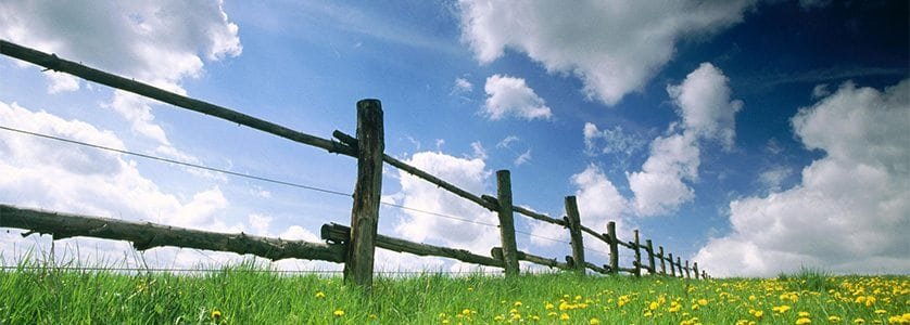 10 Quick Fence Tips