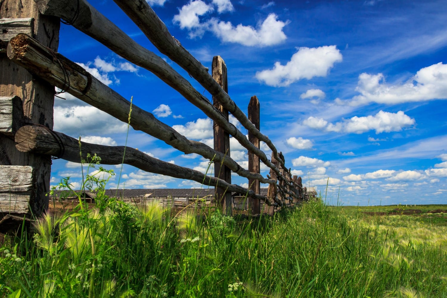 Split Rail Fence in Denver at Devil's Thumb Ranch