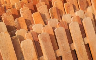 Lifestyle Changes that Might Require a New Cedar Fence
