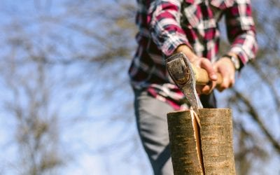 Cutting Your Own Split Rail Fence