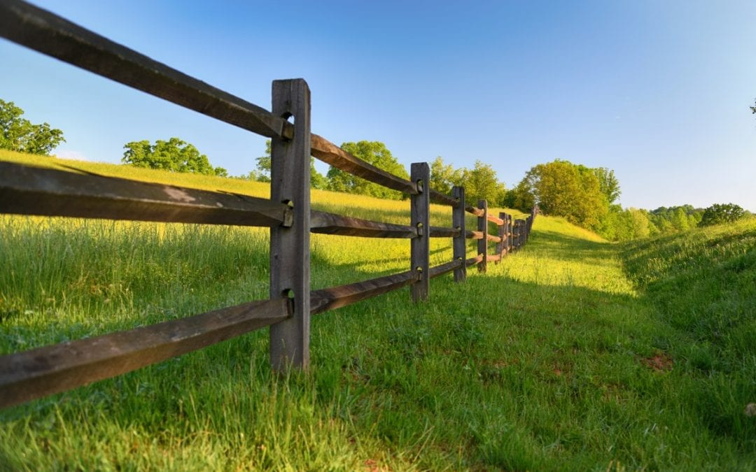 Everything Split Rail Fence