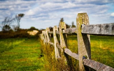The Basics Of Split Rail – Why It's A Great Choice?