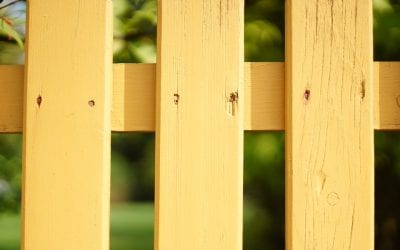 Fencing Foundations: Which Post is Best?