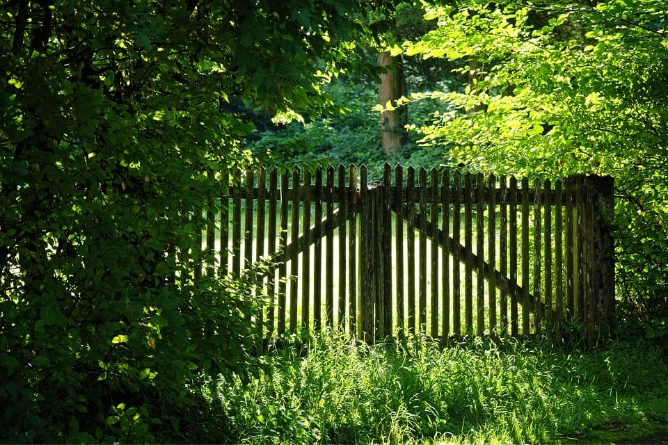 Building an Eco-Friendly Fence