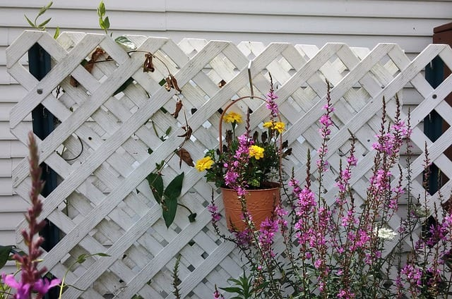 Lattice Fencing – Not Just Cheap Concealment
